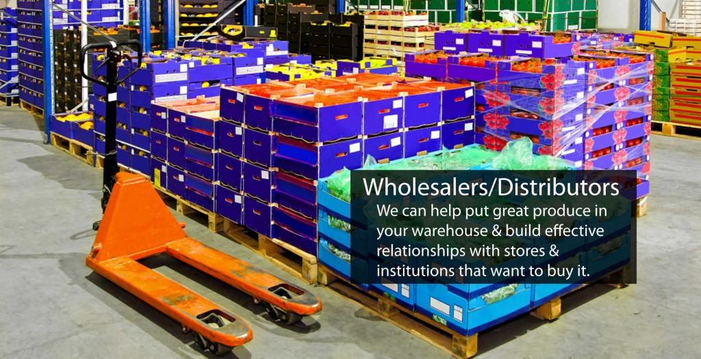 new-wholesalers